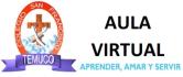 Aula Virtual San Francisco de Temuco